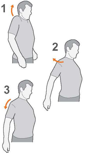 Exercise advice: shoulder pain | The Chartered Society of Physiotherapy