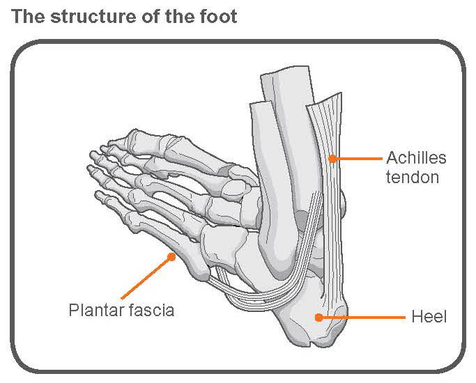 exercise advice: foot pain