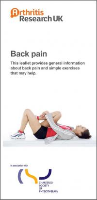 Back pain exercises | The Chartered Society of Physiotherapy