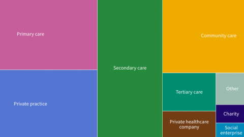Visualisation of physiotherapy settings that are delivering services remotely