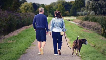 A couple walking a dog