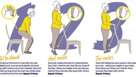 An image showing some of the 6 Easy Exercises for older people - Stay Active @ Home series